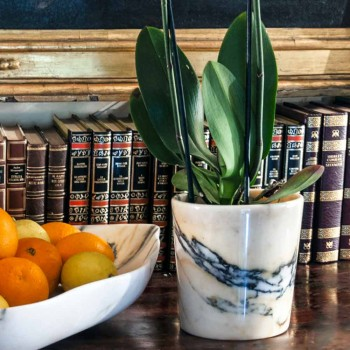 Afgeronde vaas in Paonazzo marmer gemaakt in Italië, 5 stuks - Murlino